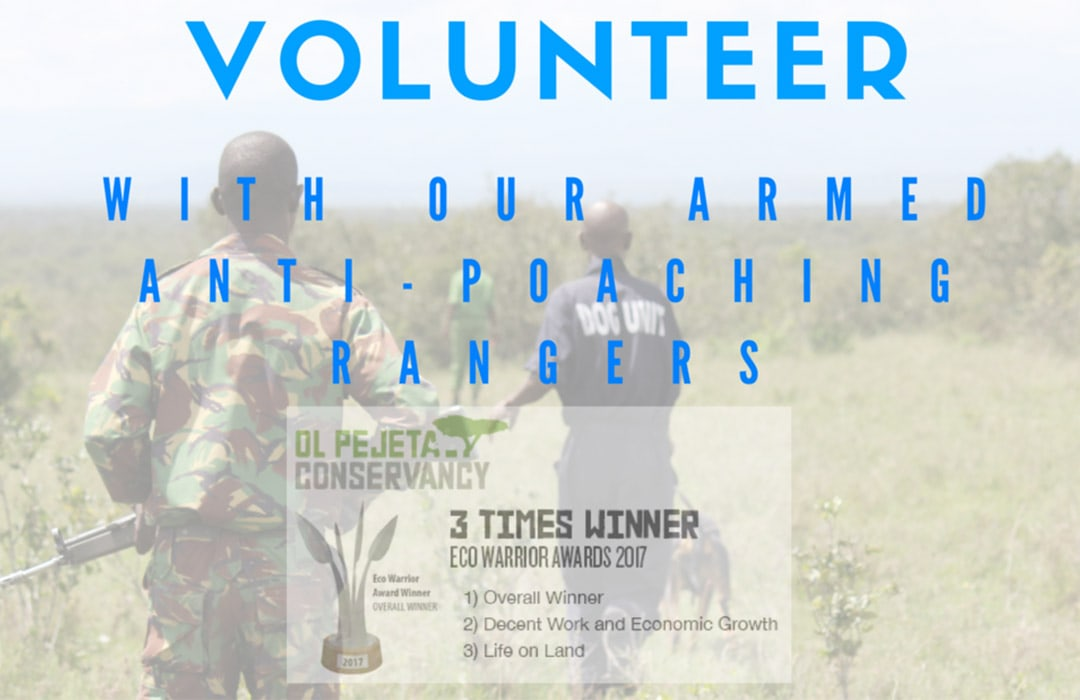 volunteer_with_our_armed_anti_poaching_rangers_about_image